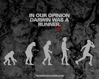 Evolution of Human Running: Pearl Izumi Gets It (Partly)