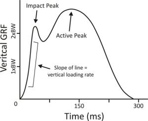 vertical-impact-loading-rate-in-running-linkages-to-running-injury-risk-21