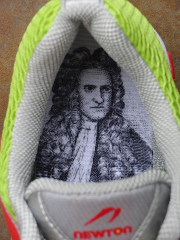 Newton Distance Racer Review: Sir Isaac