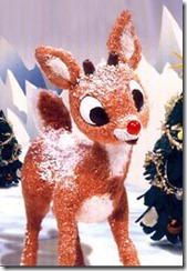Rudolph Injured, Flown to the University of Virginia Gait Clinic
