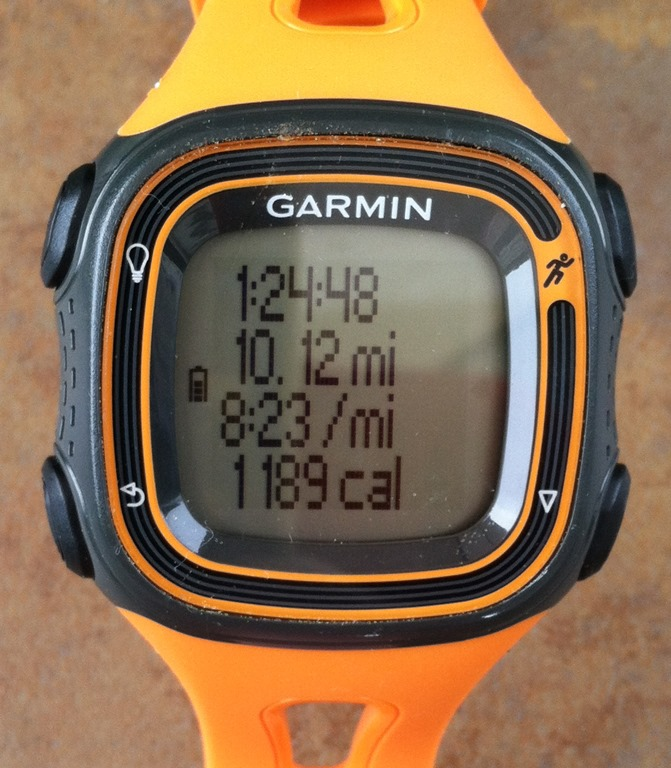 garmin forerunner 10 fr10 review great performance in a small low priced package. Black Bedroom Furniture Sets. Home Design Ideas