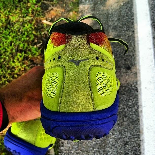 Mizuno Wave Zapatos De Trail-running Evo Ferus - Mujeres r0ka2xwmeS
