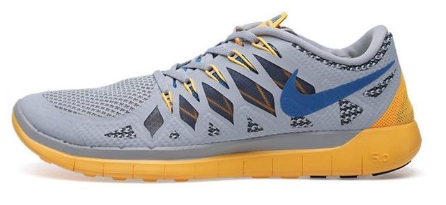 Nike Free 5.0 v2 gray