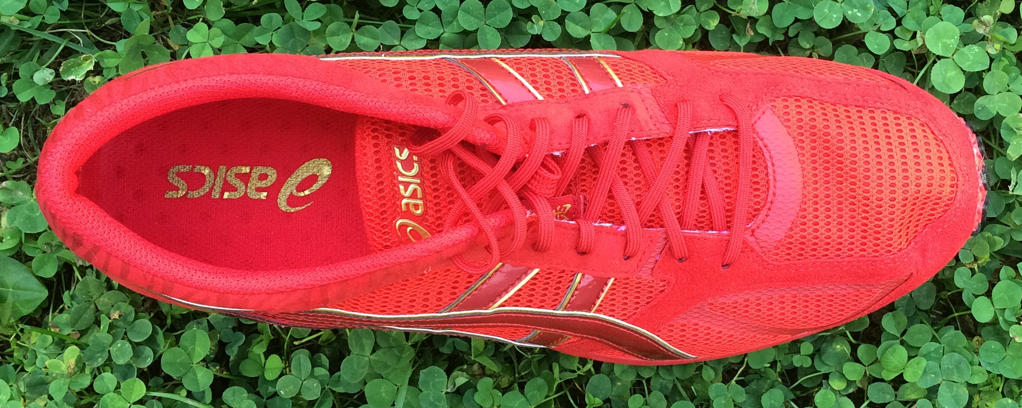 Best Asics Cushioned Running Shoes